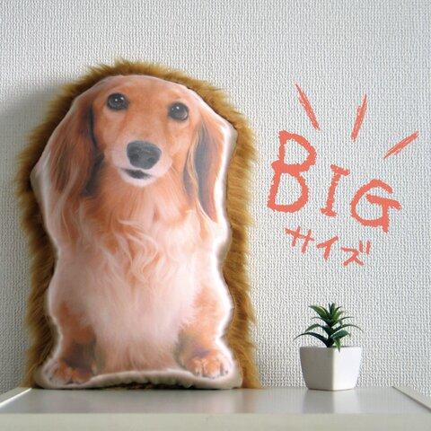 ビッグサイズ 犬 猫 ペット 動物 ダックス クッション ぬいぐるみ インテリア メモリアル プレゼント オーダーメイド 画像 写真 フサフサ ビッグn