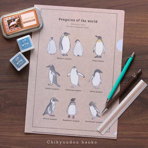 ペンギン図鑑風クリアファイル(A4)