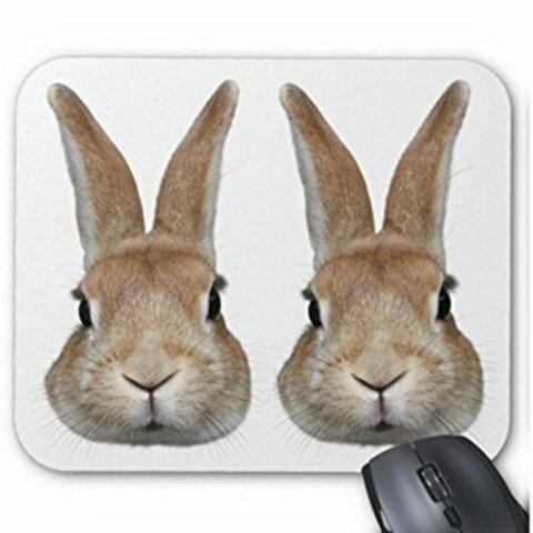 2匹のウサギの顔のマウスパッド:フォトパッド( 世界の野生動物シリーズ )