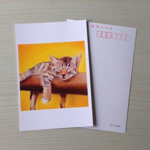 22ポストカード お昼寝子猫 6枚セット