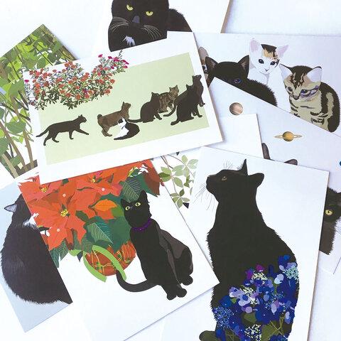 黒猫ポストカード10枚セット