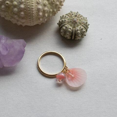 桜貝のリング