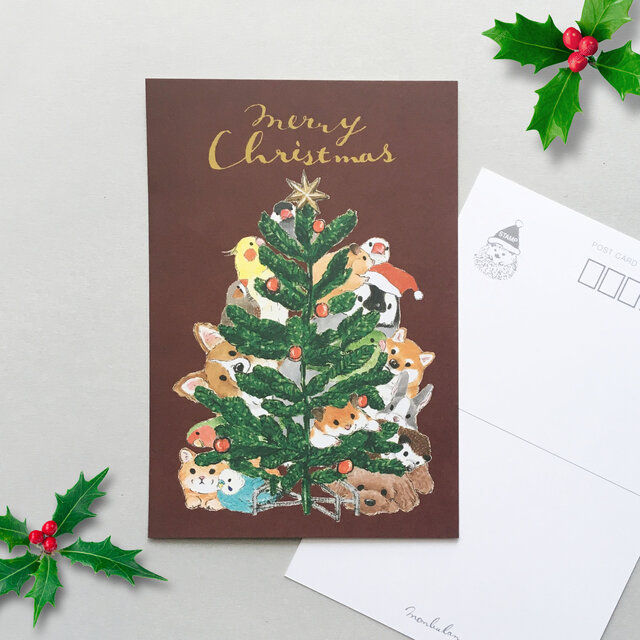 クリスマス カード 画像